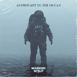 Astronaut In The Ocean